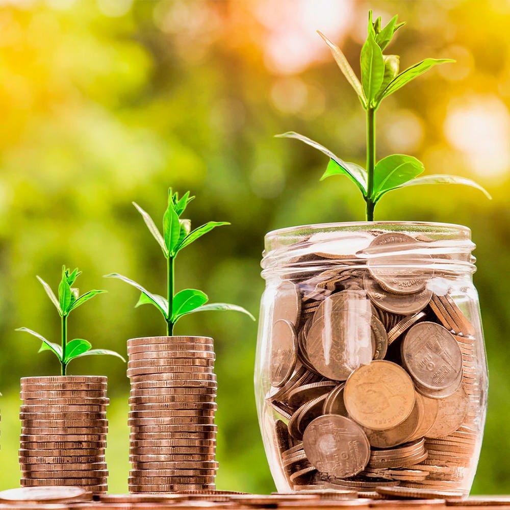 Obsługa Inwestycji 1 Doradztwo, Dystrybucja, Obsługa Inwestycji
